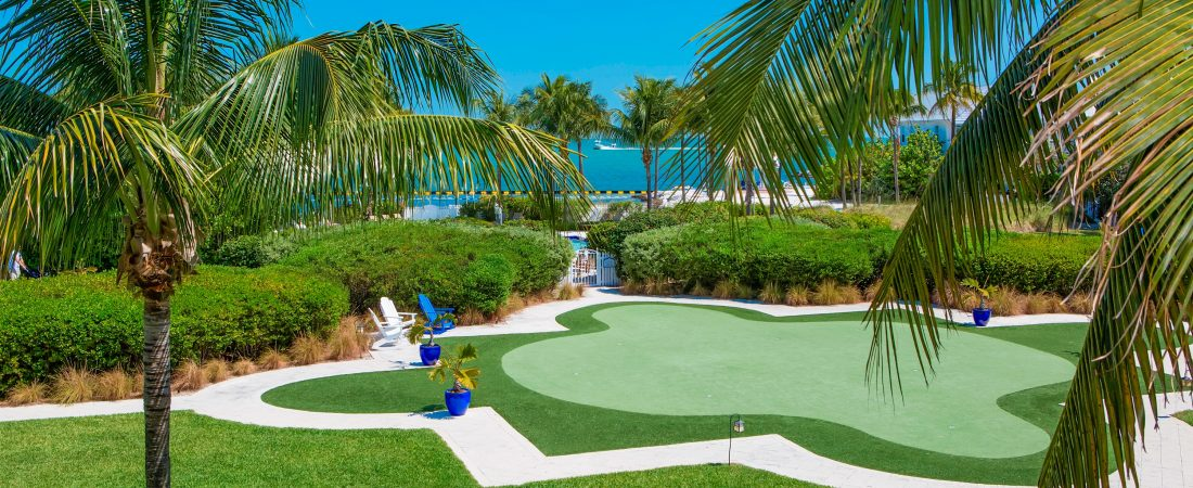 Putting green surrounded by lush grass and palm trees.